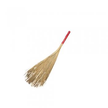 Fish Tail Lidi Broom